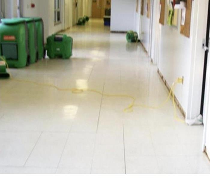 Commercial Water Cleanup