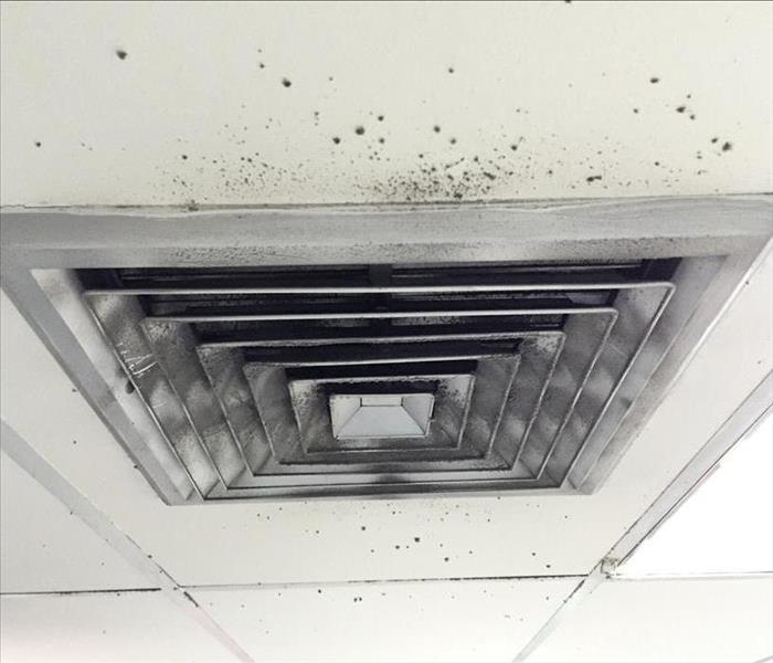 mold air duct