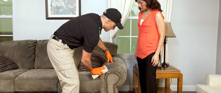 Johnson City, TN carpet upholstery cleaning