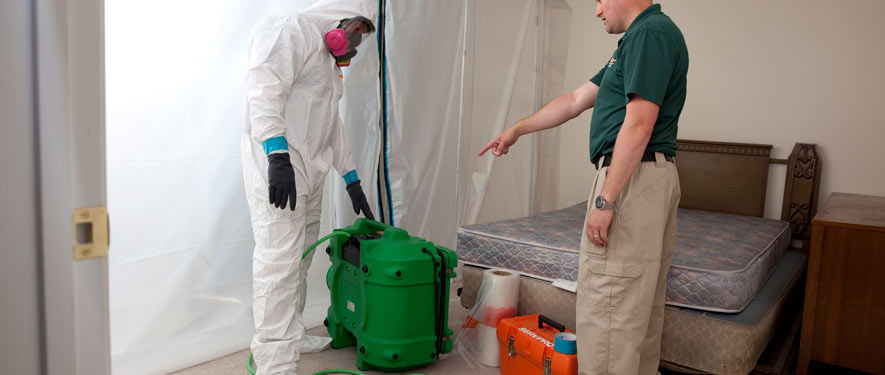 Johnson City, TN mold removal process